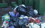Portarlington French Festival success soured by 'disappointing' dumping