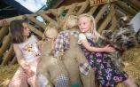 From Durrow scarecrows to Camross fun day what's on in Laois this weekend