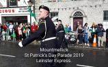 WATCH: Family fun at Mountmellick St Patrick's Day Parade