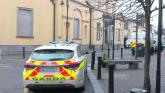 Attempted to get into cars in Laois town
