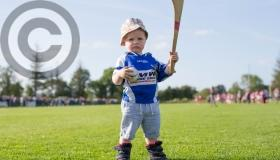 GALLERY - Laois Sports Pictures of the Year 2017