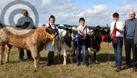 IN PICTURES - Ploughing how are ya - there was a great day at the Clonaslee Show in Laois
