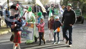 St Patrick's Day Parade pictures from  Vicarstown