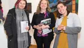 Art from all over Ireland displayed in Portlaoise