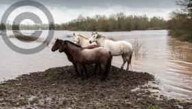 Dramatic pictures of Mountmellick in flood after Storm Ciara