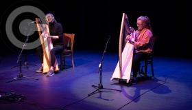 Striking the right trad notes on harps and pipes over Halloween in Laois