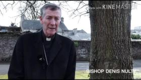WATCH: Bishop Denis Nulty praises 'virtual walk to Lourdes' in Laois