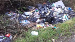 County council employee blows whistle on rogue illegal dumping in  lovely Laois