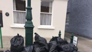 Illegal dumping 'shameful' at Abbeyleix Bog weeks after Michael D Higgins visit
