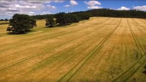 WATCH: Fascinating video showcasing 378 year-old local farm open for Laois Heritage Week