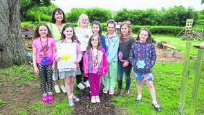 Community spirit is the key to Entente Florale success in Abbeyleix