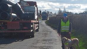 Treacherous Mountrath road putting residents in danger in Laois