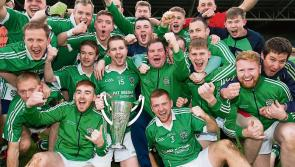 LAOIS  GAA Senior Club Football - Club-by-club guide to all the teams in this year's Championship