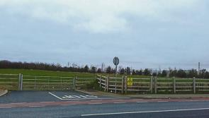 Portlaoise councillors and local schools oppose Borris Road houses