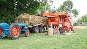 All roads lead to Laois for a day of vintage farm family fun