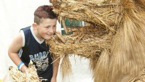 Durrow Scarecrow Festival Teenzone Events