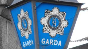 Gardaí carry out raids on 31 homes across 12 counties in child pornography probe