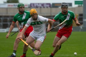 Rathdowney-Errill on the double as Senior hurling league crown added to weekend league haul