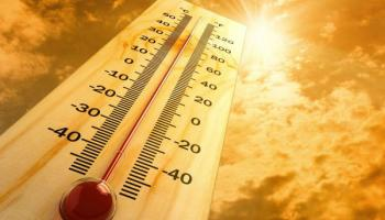 Laois Minister urges climate action as intense heatwaves and floods predicted