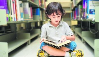 Book exchange boxes idea refused by Laois library service