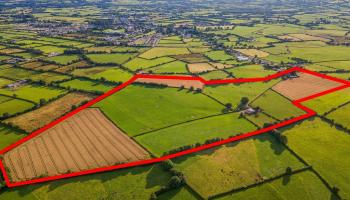 Watch: Farm on the market expected to fetch €1 million
