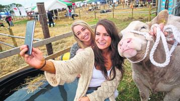 BREAKING NEWS: Tullamore Show cancelled for second year in a row due to Covid-19
