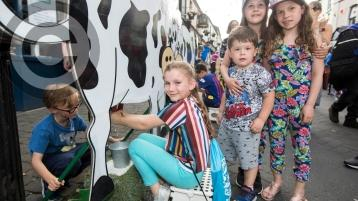 PICTURES: Out and about fun in the sun at the Old Fort Festival in Portlaoise