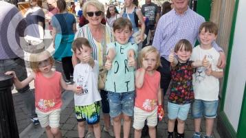 What's happening at the Old Fort Festival in Portlaoise on Sunday?