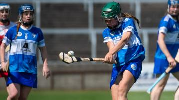 Two changes for Laois Camogie for make or break championship game with Tipperary