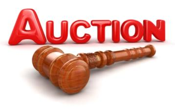 gaa laois auction