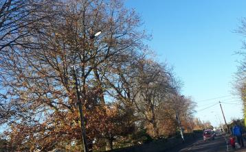 Streetlights are shining 24 hours a day on this Portlaoise road