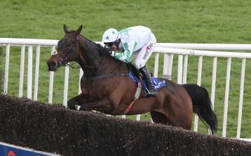 Laois-owned horse Our Duke dies of 'massive heart attack' after morning workout