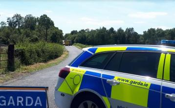 Gardai in Laois appeal for witnesses or dash cam footage following serious crash