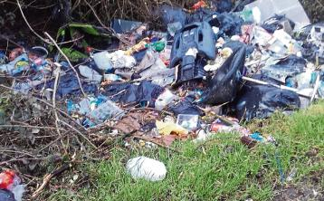 'Any sign is better than no sign' to tackle illegal dumping in Laois