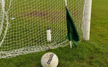 Laois LGFA on the look out for new managers for juvenile teams