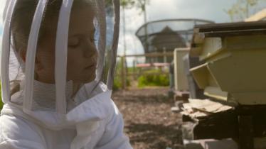 beekeeping crinniú na nÓg