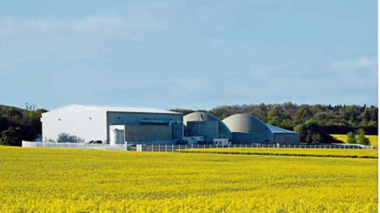 Boost for Offaly as Bord naMónato deliver almost 1,500 'Climate Solution' jobs in the Midlands