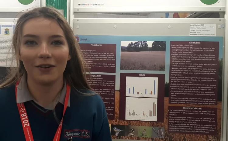 Laois student Caoimhe Murphy wild bird project af BT Young Scientist