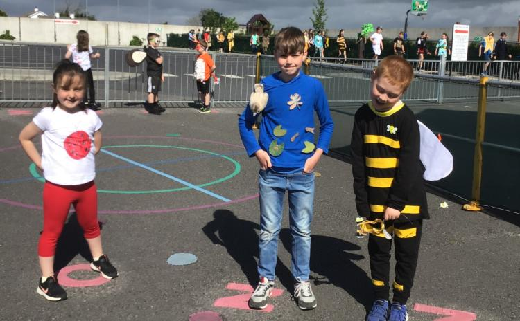 IN PICTURES Castlecuffe school challenges public to help fund their outdoor classroom