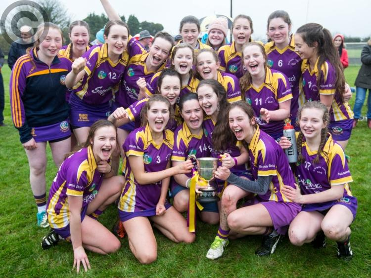 Cullohill local news gaa st brigids see early blitz get them over the line against camross malvernweather Choice Image