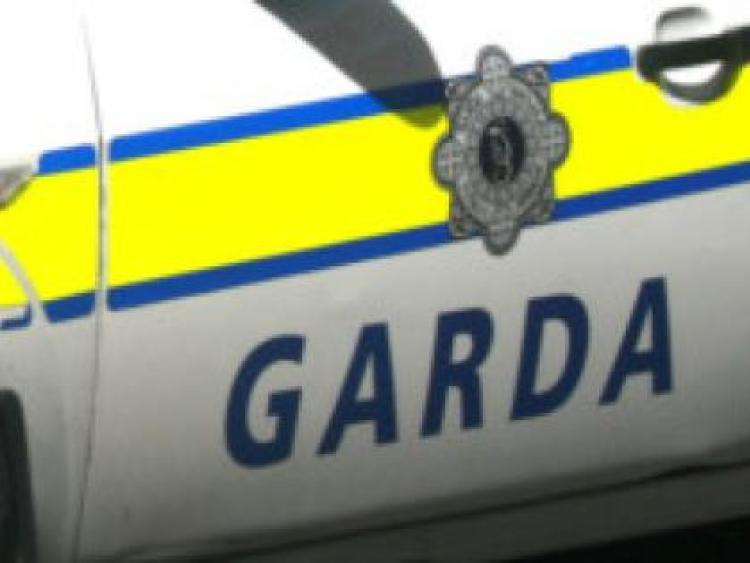 Woman killed in Laois road crash