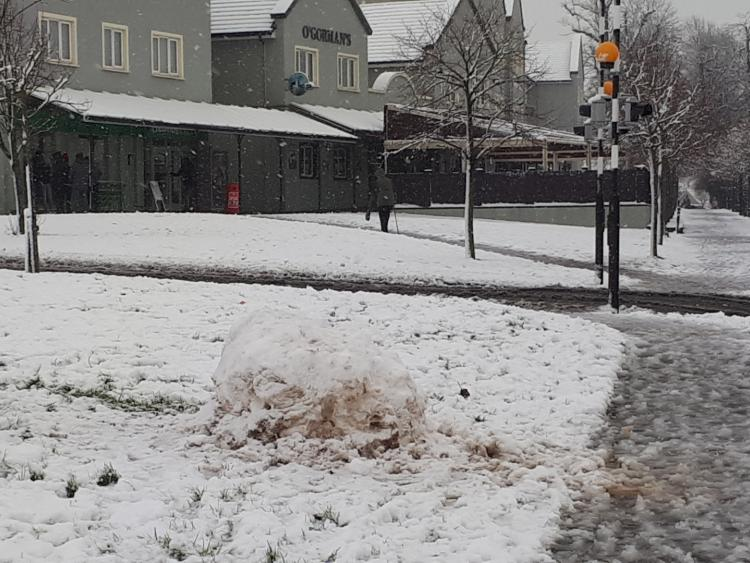 http://leinsterexpress.ie/resizer/750/563/true/1520936256568.jpg--snow__weather_st_patrick_s_day__beast_from_the_east.jpg