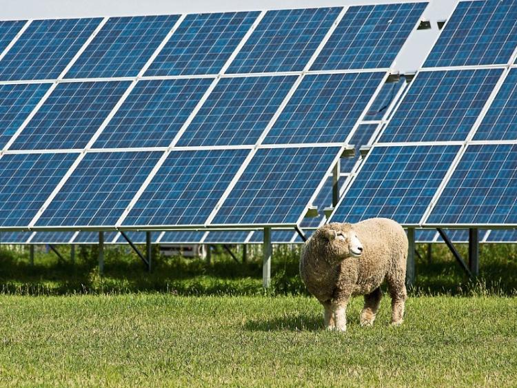 Waterford solar farm gets Bord Pleanála go-ahead